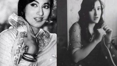 Photo of 'মুঘল-ই-আজম' খ্যাত মধুবালার সাদৃশ্য টিকটকে