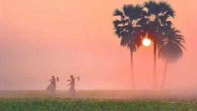 Photo of কমতে শুরু করেছে তাপমাত্রা, আসছে শৈত্যপ্রবাহ
