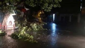 Photo of আম্পান তাণ্ডবে প্রায় লন্ডভন্ড কলকাতা