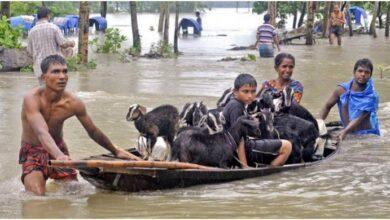 Photo of নদ-নদীর পানি কমলেও দুর্ভোগ কমেনি বানভাসীদের