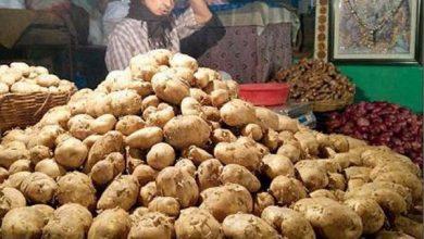 Photo of আলুর দাম কেজি প্রতি ৫ টাকা বাড়ল